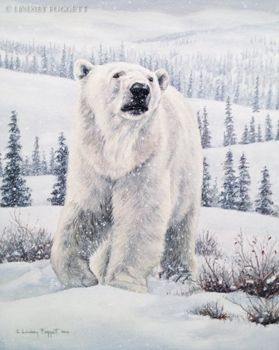 """New Territory""- Polar Bear"