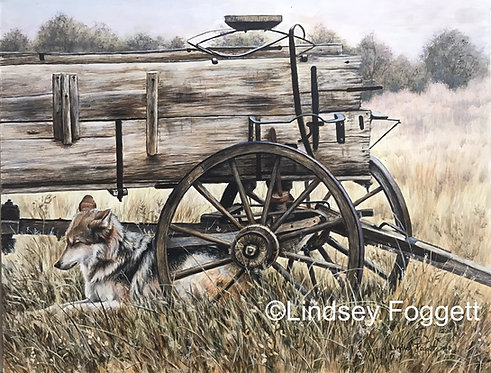 """""""The Forgotten"""" - Mexican Wolf"""