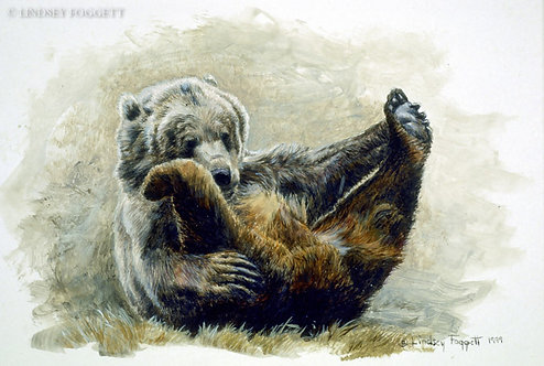 """Play Time VI"" - Grizzly Bear (Miniature Painting)"
