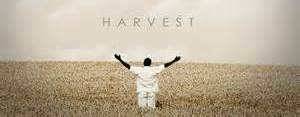 Thanksgiving and Harvest