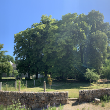 Gîte et jardin privatif