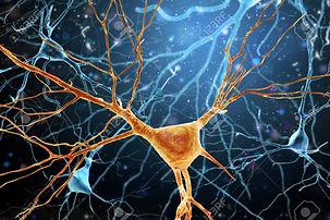 Neuron2.jpg