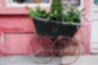 shutterstock_555319000.jpg
