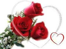 Abella Wedding Roses