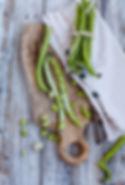 genetic garden peas