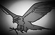 Peregrine Translations, Translations