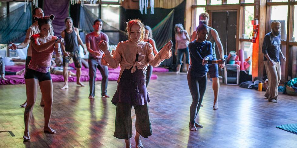 Ecstatic Dance San Francisco - Contact Improv & Axis Syllabus