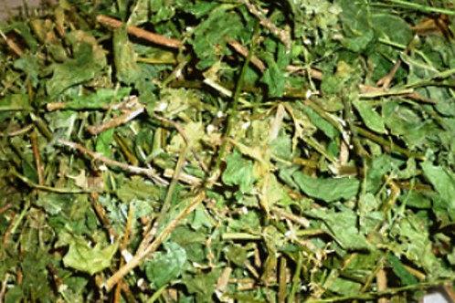Anamu Powder/Guinea Hen Weed