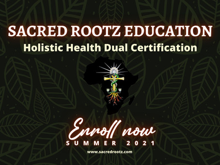 Holistic Health Dual Certification Course