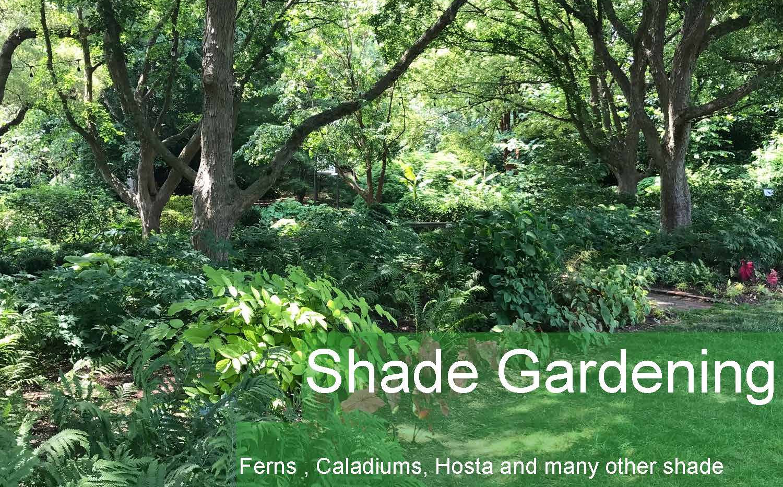 gardening_Page_09.jpg