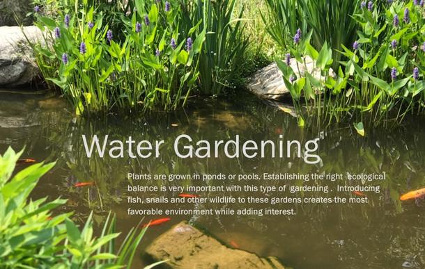 other types of gardening 2 KT EDIT.jpg