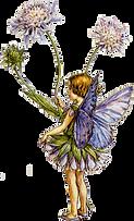 fairytallflowers_edited.png