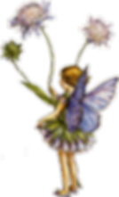 fairy-transparent-flower-1_edited.png