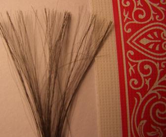 kevlar invisible thread magic
