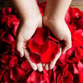 Red Silk Rose Petals