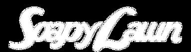 soapy lawn logo white.png