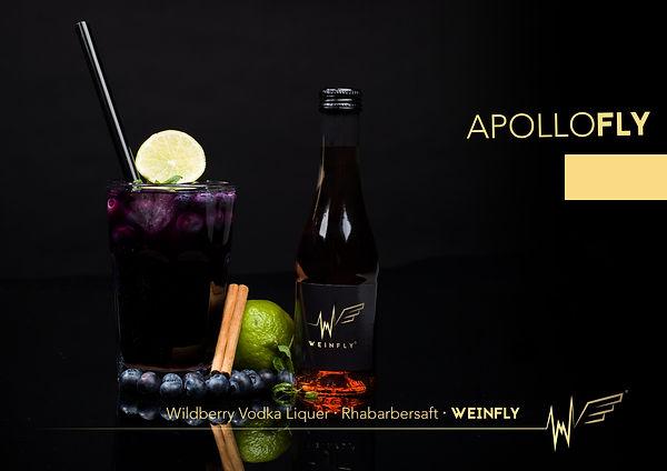 apollofly.jpg