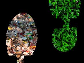 Plogging: a corrida pela sustentabilidade