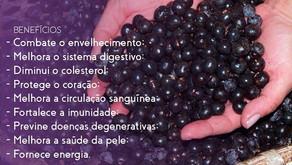 Açaí - saiba a riqueza de nutrientes que o fruto carrega