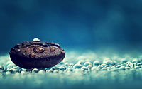 70147991-water-drop-wallpapers.jpg