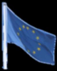 Europäische wirtschaftliche Interessenvereinigung)