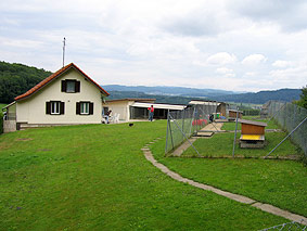 zwinger01