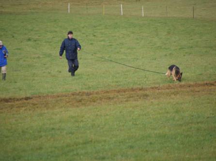 Dagio und D'Cujo an der Schweizermeisterschaft für Fährtenhunde