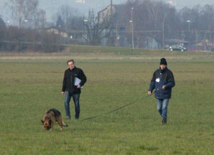 Jean und Dagio an der Schweizer-Meisterschaft IPO-Fährtenhunde