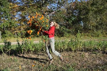 DSC_0224.JPG, ocal flowers, smal farm, local fam, csa, farm share