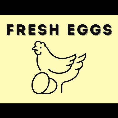 One Dozen Chicken Eggs