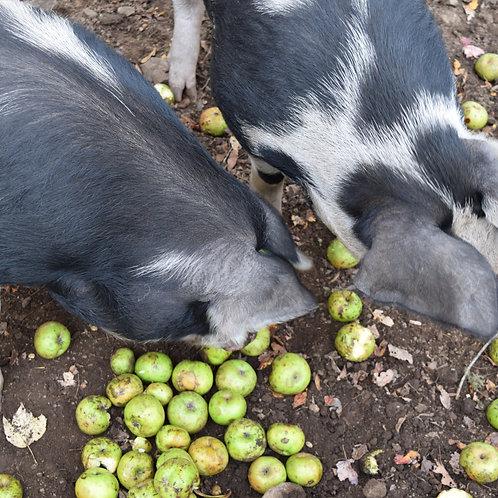 Whole Pig Deposit