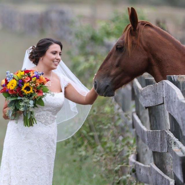 bride and horse.jpg