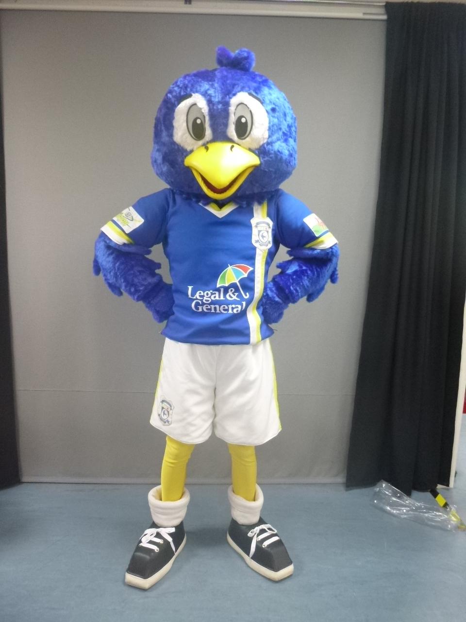 Cardiff Bluebird