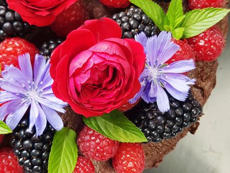 Birthday cake surprise!