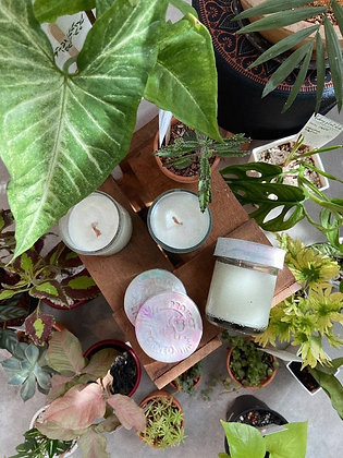 Candles for Conservation