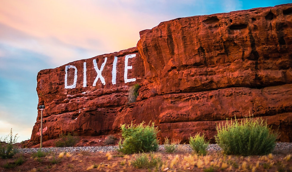 Dixie Rock 2_edited.jpg