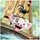 Thumbnail: Ravensburger 3x49 (80045) Moana