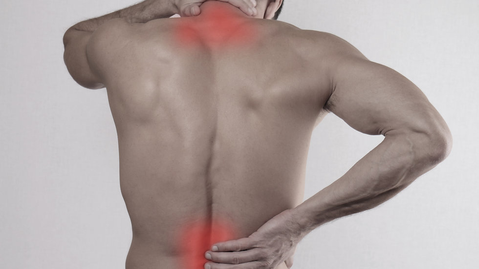 Back Pain Rehabilitation (Block of 10)