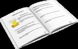 Resilienz Online Kurs Arbeitsbuch