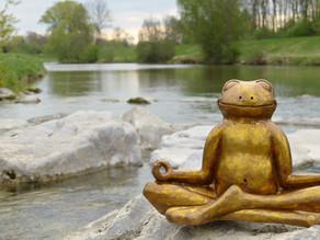4 erstaunliche Wege, wie die Natur unseren Stress abbaut