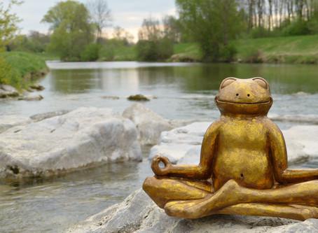 Wie die Natur uns hilft Stress abzubauen