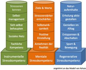 Stresskompetenz Säulen