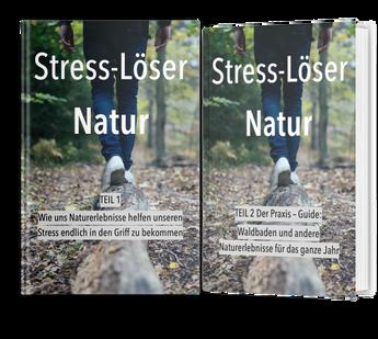 Ebook Stress-Löser