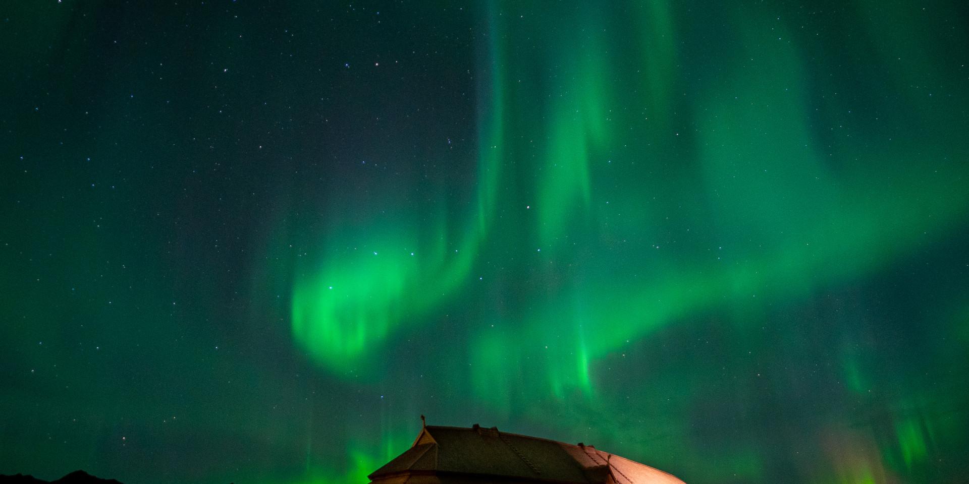 Vikingmus3.jpg