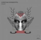 Christian Hornbostel - Essay