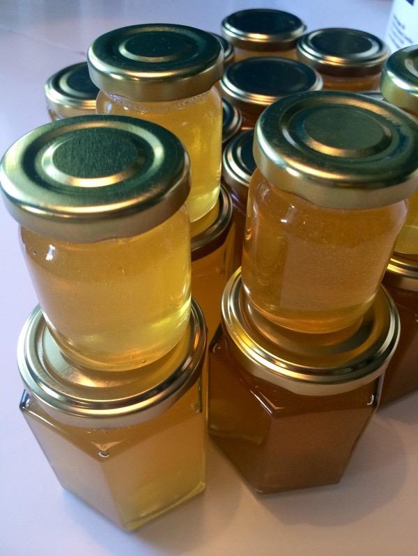 Honungskörd 2015