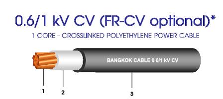 สายไฟ CV XLPE 1 core บางกอก bcc