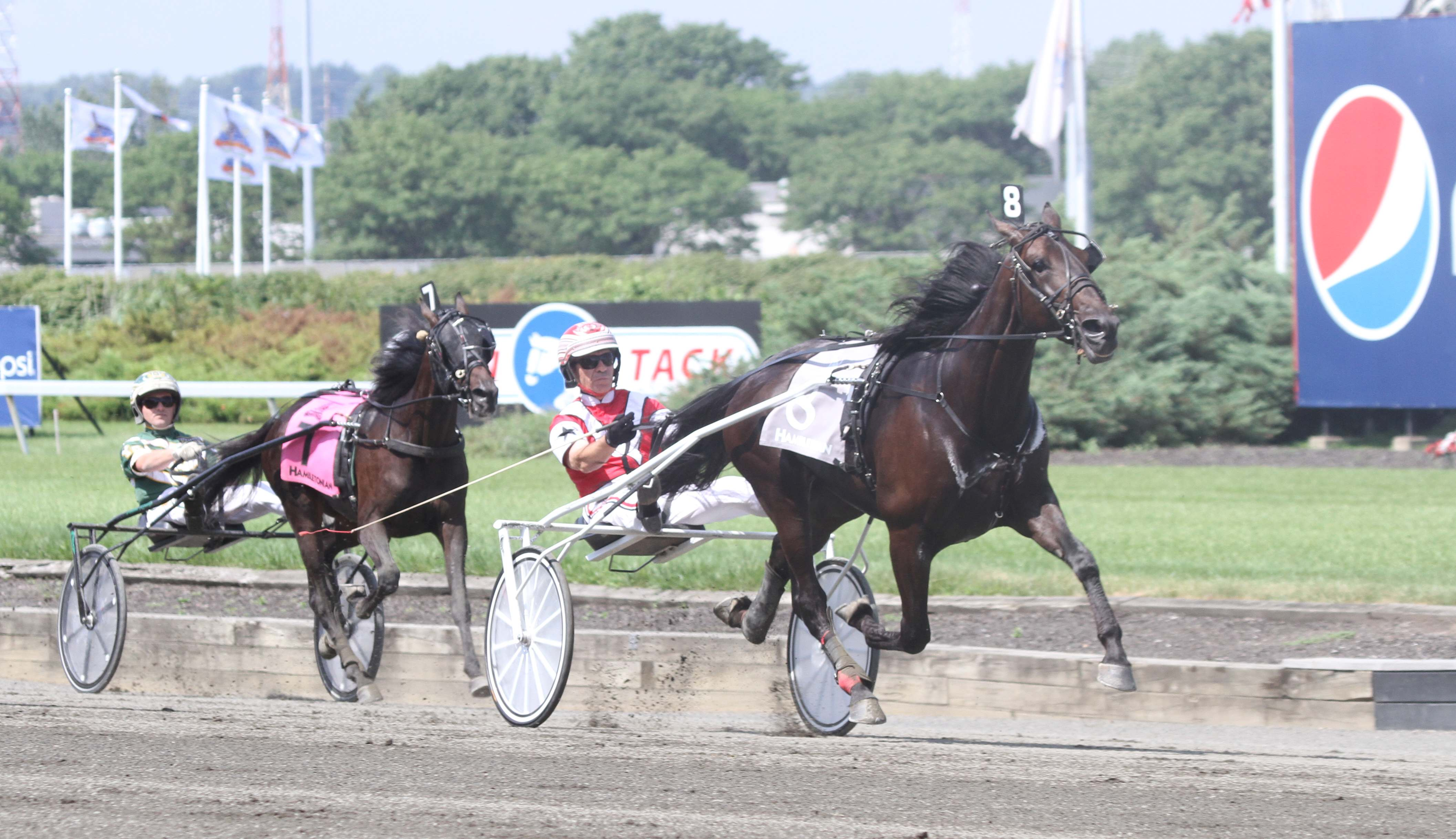 2013 Hambletonian Elimination Heat