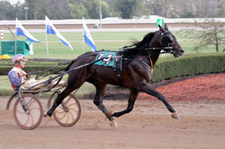 My MVP at The Red Mile