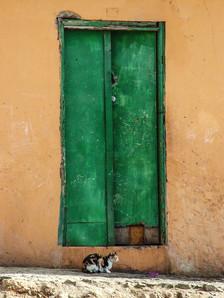Gato frente a puerta en Mindelo, 2009